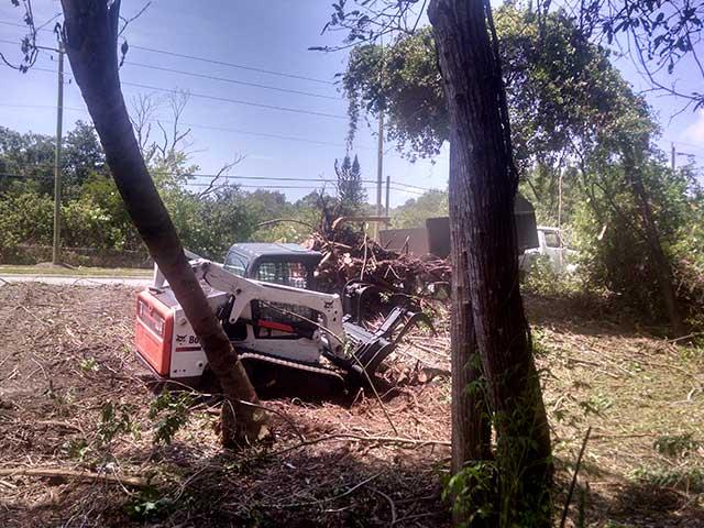 Debris Removal in Bradenton